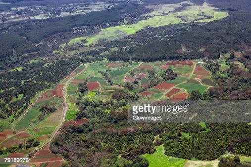 Aerial view of a landscape, Hilo, Big Island, Hawaii Islands, USA : Stock Photo