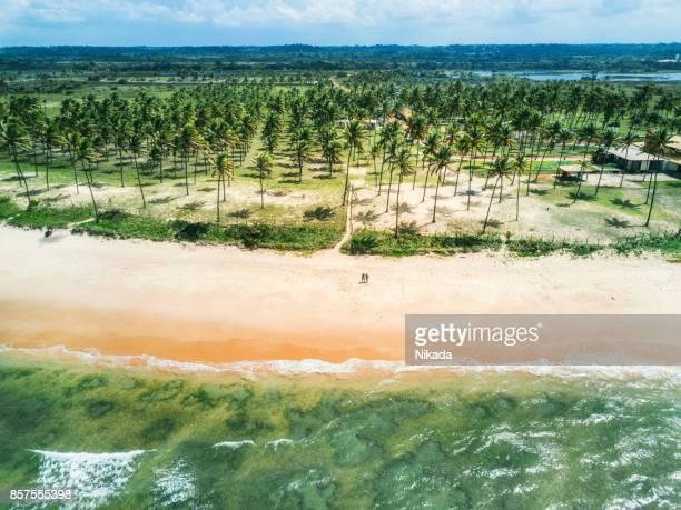 Luftaufnahme von einem paradiesischen Strand in Brasilien