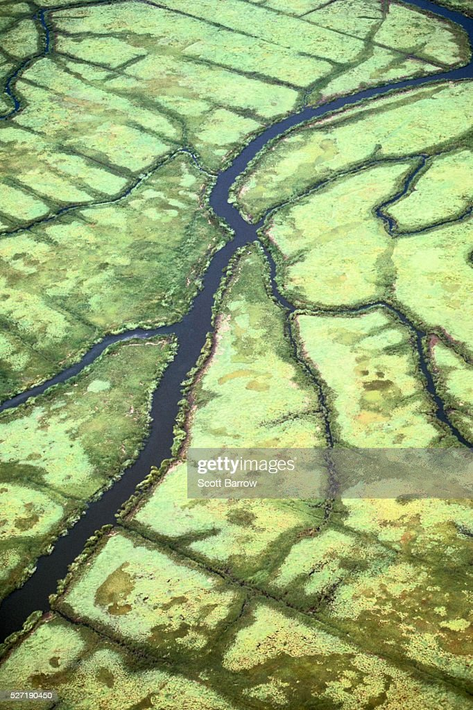 Aerial view of a river : Stock Photo