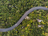 Aerial view of a road winding through a dense green forest