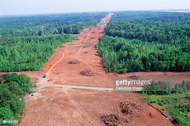 Aerial view of clear cutting forestry