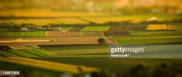 Vue aérienne de paysage de campagne