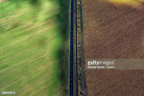Aerial View Of Country Road By Fields