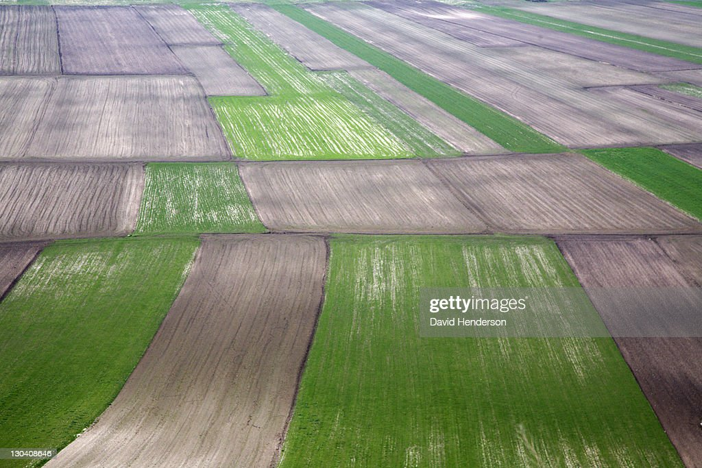 Aerial view of crop fields in rural landscape : Stock Photo