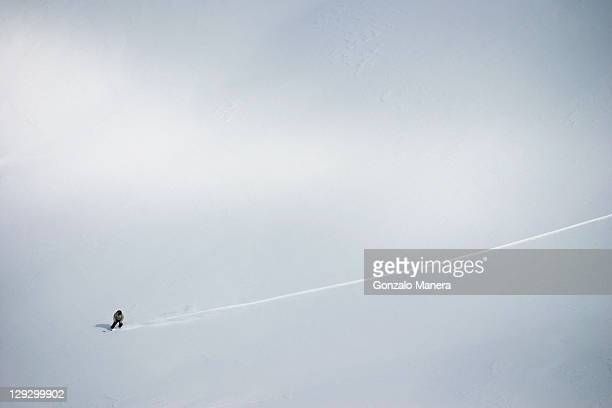 Aerial view of cross country skier