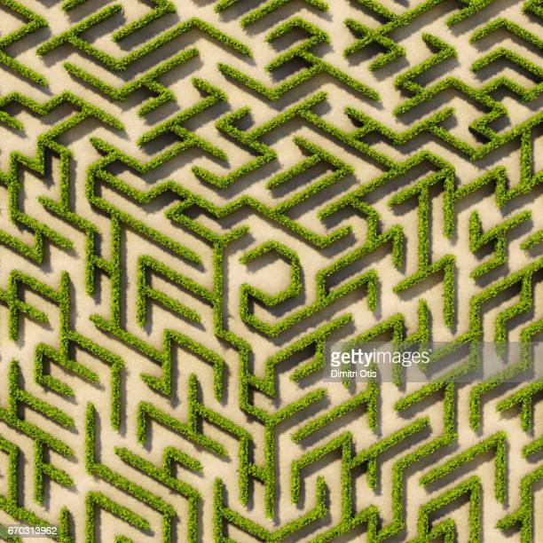 Aerial view of cube shape hedge maze