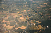 An aerial view of cultivated areas