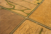 Aerial view of farm fields, North Dakota