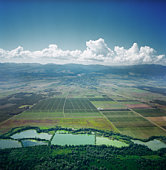 aerial view of fields in Georgia