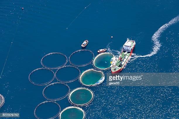 Vue aérienne de ferme piscicole