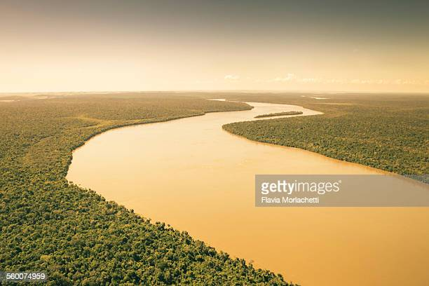 Aerial view of Iguaçu river across rainforest