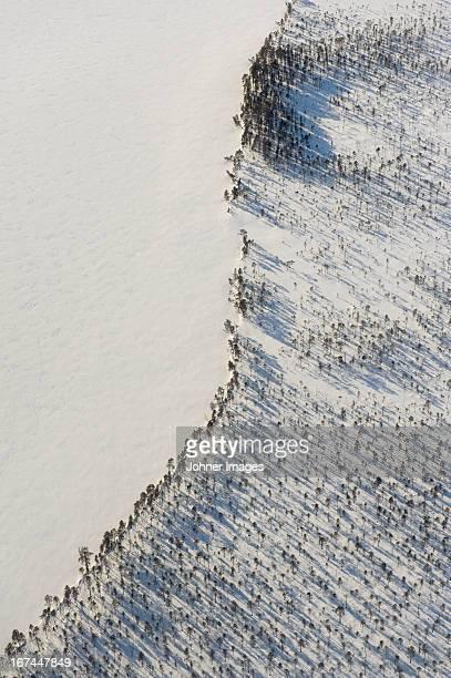 Aerial view of lake beach at winter