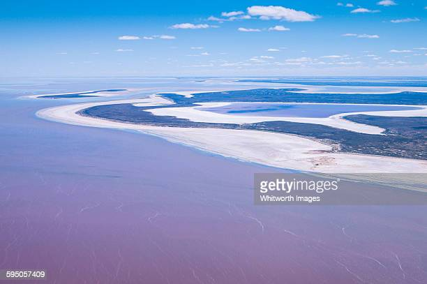Aerial view of Lake Eyre with pink water Australia