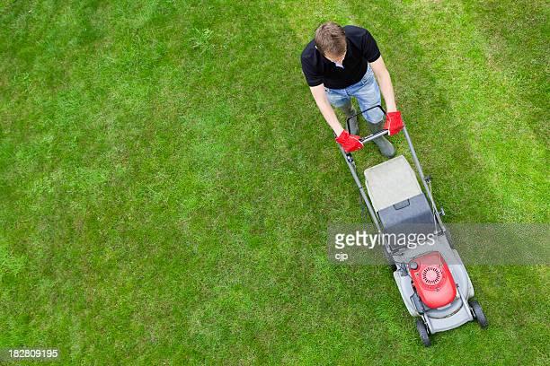 Vue aérienne de l'homme sur une pelouse verte avec Tondeuse à gazon manuelle