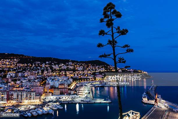 Aerial view of Nice port