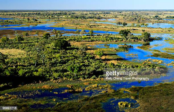 Aerial View of Okavango Delta