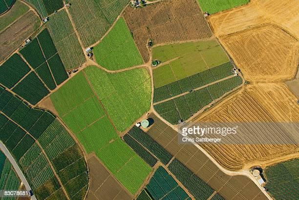 aerial view of patchwork fields