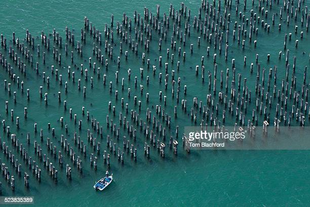 Aerial view of pier pylons and boat, Melbourne, Victoria, Australia