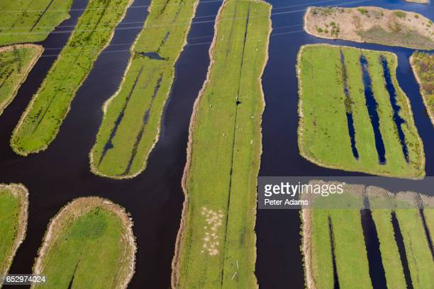 Aerial view of polder in Holland, Netherlands