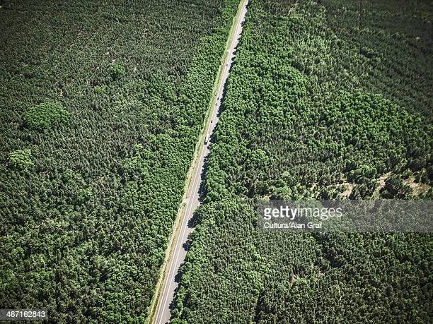 Aerial view of road in rural landscape