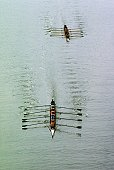 Aerial view of rowing team practicing on the river, Potomac River, Georgetown University, USA
