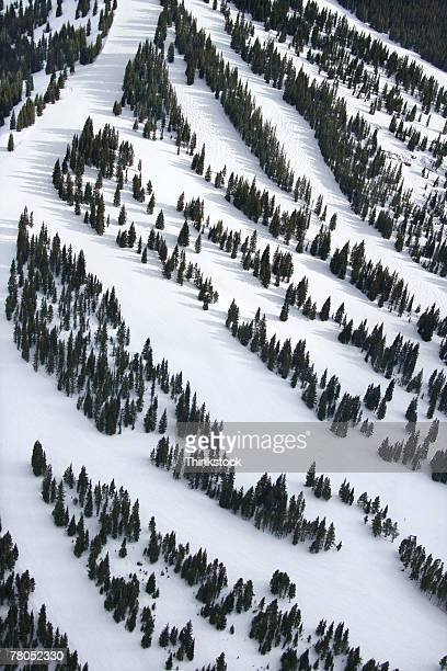 Aerial view of ski slopes in the Rocky Mountains