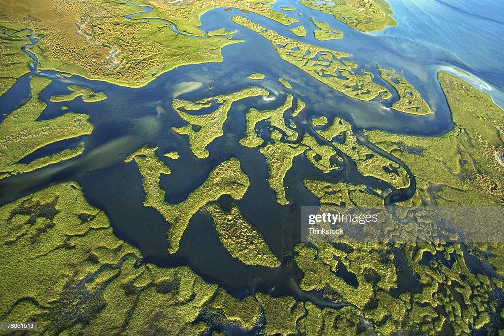 Aerial view of Steinhatchee River, Florida