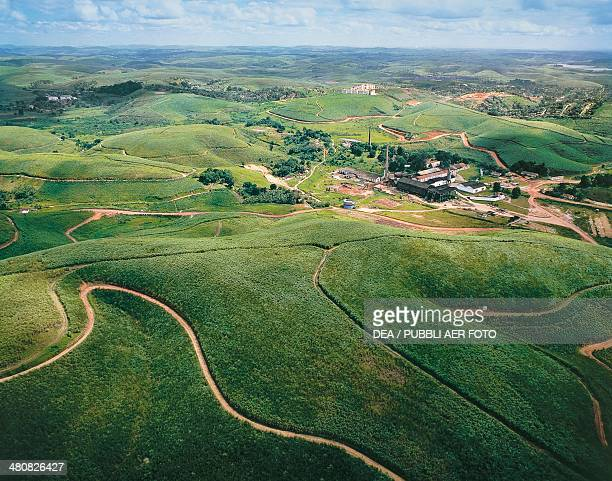 Aerial view of sugarcane plantation and refinery on the outskirts of Recife State of Pernambuco Brazil