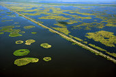 Aerial view of swamplands on Mississippi River, New Orleans, Louisiana