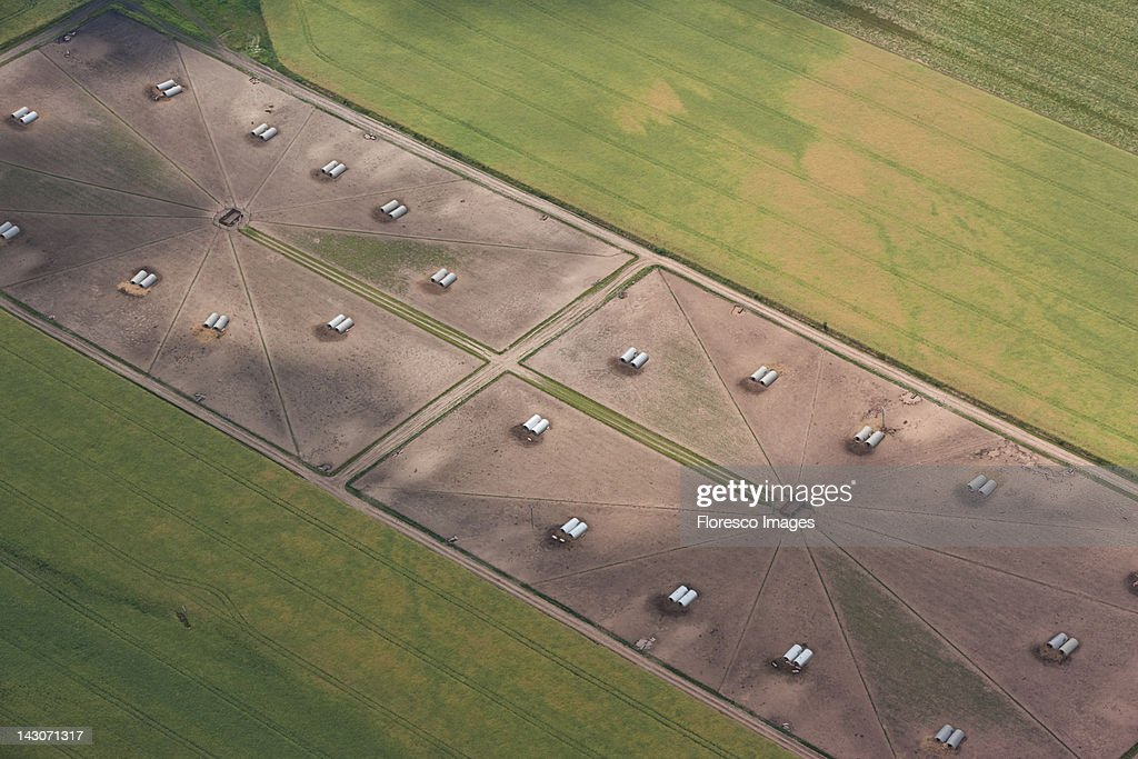 Aerial view of tanks in crop fields : Stock Photo