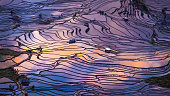 Aerial view of Terraced rice fields, Yuanyang, China