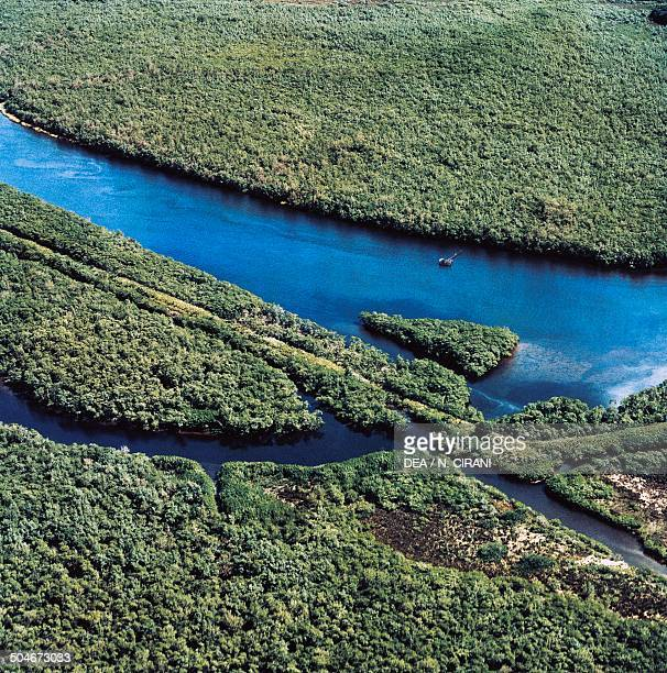 Aerial view of the Amazon River in the rainforest Brazil