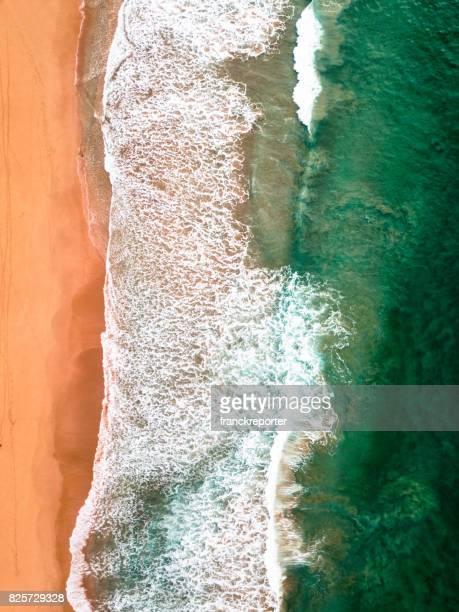 aerial view of the australian bondi beach