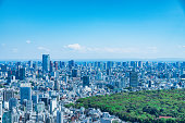TOKYO, JAPAN - April 23, 2017: Aerial view of the Japanese capital city seen from the Metropolitan Government Building (Tokyo City Hall)