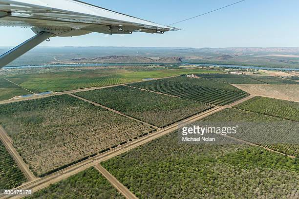 Aerial view of the man-made Ord River near the town of Kununurra, Kimberley, Western Australia, Australia, Pacific
