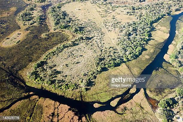 Vue aérienne du Delta de l'Okavango dehors de Maun, Botswana