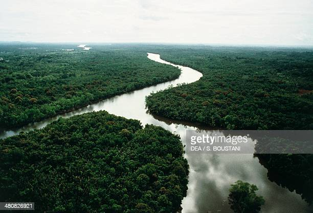 Aerial view of the rainforest in the State of Sarawak Borneo Island Malaysia