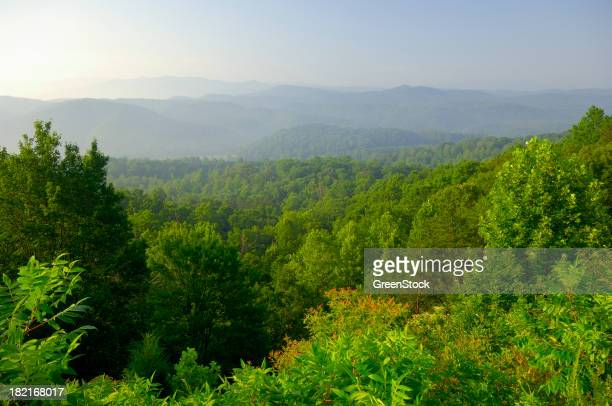 Aerial view of the Smoky Mountain Foothills