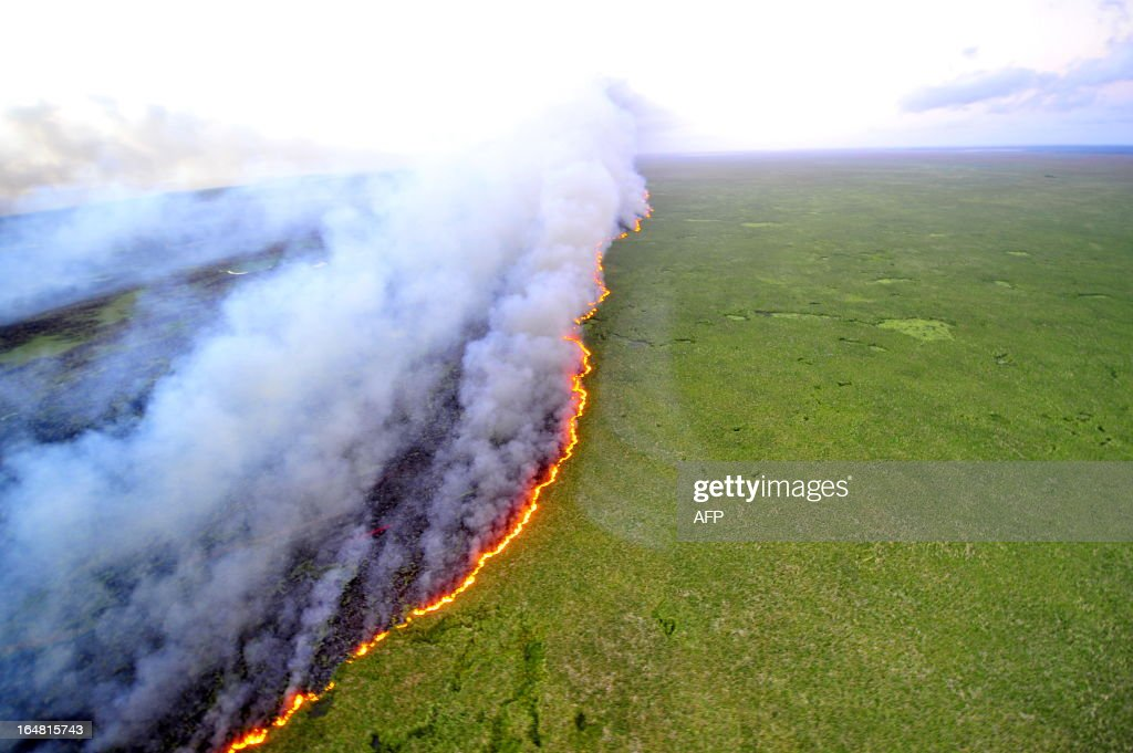 Aerial view of the Taim Ecological Station on fire, in Rio Grande do Sul state, southern Brazil, on March 27, 2013. The fire that started Tuesday in southern Brazil had reached approximately 1,400 acres and the risk of spreading is severe, since there is no way to reach the place by water or land. AFP PHOTO / Lauro Alves / Agencia RBS / BRAZIL
