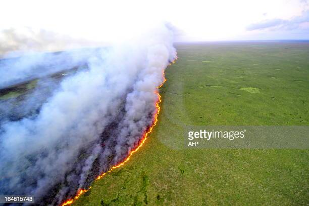 Aerial view of the Taim Ecological Station on fire in Rio Grande do Sul state southern Brazil on March 27 2013 The fire that started Tuesday in...