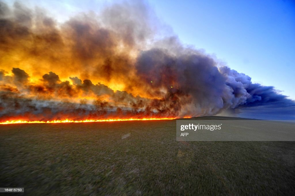 Aerial view of the Taim Ecological Station on fire, in Rio Grande do Sul state, southern Brazil, on March 27, 2013. The fire that started Tuesday in southern Brazil had reached approximately 1,400 acres and the risk of spreading is severe, since there is no way to reach the place by water or land. AFP PHOTO / Lauro Alves / Agencia RBS / BRAZIL OUT