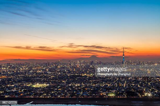 Aerial view of Tokyo city at sunset
