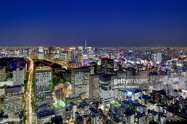 Aerial view of Tokyo Downtown at twilight