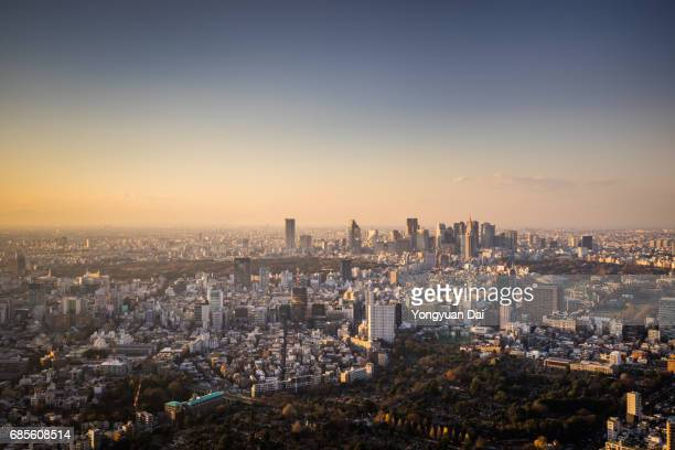 Aerial View of Tokyo Skyline at Sunset