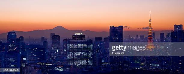 Aerial View of Tokyo Tower and Mt.Fuji at Night
