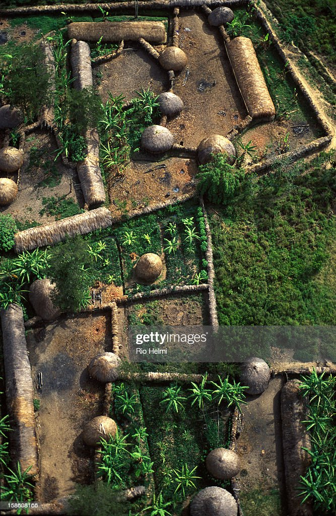 Aerial view of traditional housing compound in the Baliem Valley of West Papua (Irian Jaya).