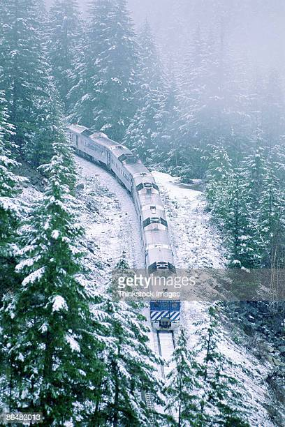Aerial view of train in forest, Canada
