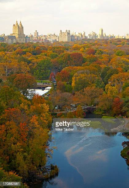 Aerial view of urban park, New York, New York, United States