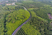 Aerial view of winding road through lush green forests in Krabi, Thailand.