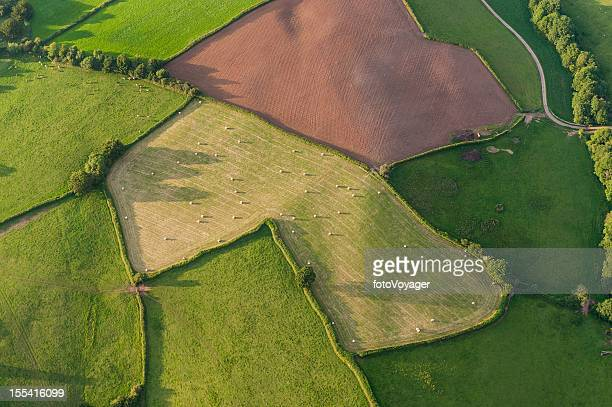 Aerial view over farm fields crops and hedgerows